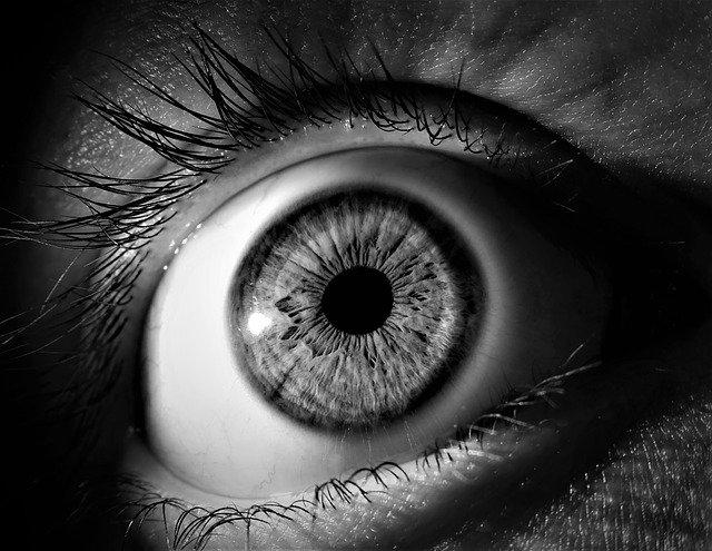 iridologia-iris-b&n