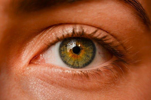 iridologia-iris